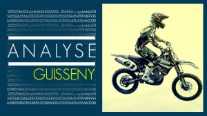 ANALYSE: Guisseny